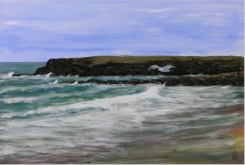 Zee - Meeuw - Strand