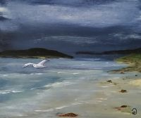 Strand - zee -meeuw