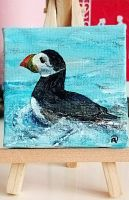 Puffin - Zee
